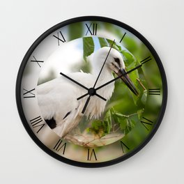 Orphaned young White Stork Wall Clock