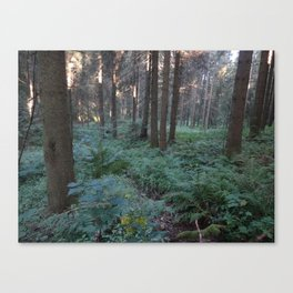 The Black Forest Canvas Print