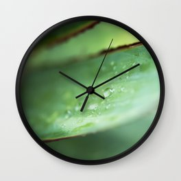 Dew Drops on Agave Leaf Wall Clock