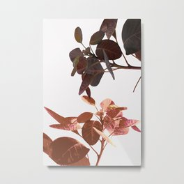 Leaves Spring Nature Metal Print