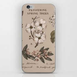 Flowering Spring Trees iPhone Skin
