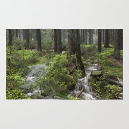 Mountains, forest, water. Rug