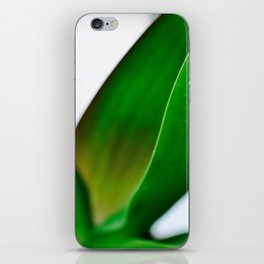 Orchid leaves iPhone Skin