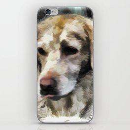 Labradors fun in the mud iPhone Skin