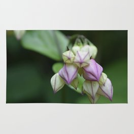 Delicate Buds Rug