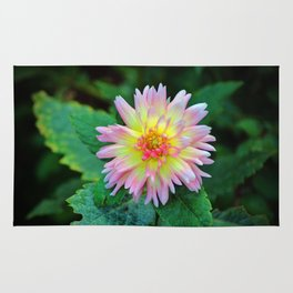 Dahlia With Green Leaves Rug