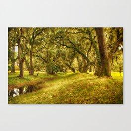 Yellow morning in Georgia Canvas Print
