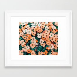 Floral Bliss #photography #nature Framed Art Print
