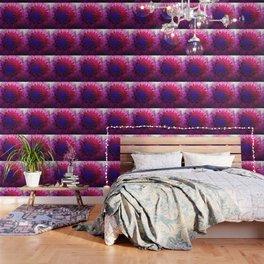 CLEANLINESS REGRESSION Mandala Wallpaper