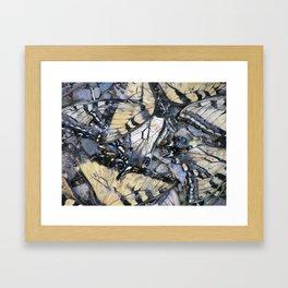 Wrecked Wings Framed Art Print