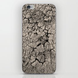Cracked Earth iPhone Skin