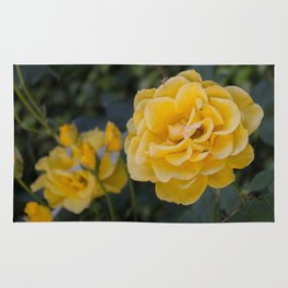 Rose Garden Six (with bonus friend) Rug