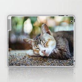 Peace Sleep Laptop & iPad Skin
