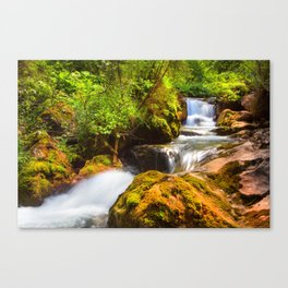 Swiss rapids. Canvas Print