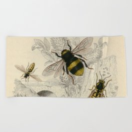 Naturalist Bee And Wasps Beach Towel