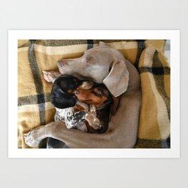 Cuddle Buddies Art Print