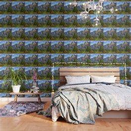 Bridaveil Falls Wallpaper