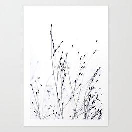 BLACK GRASS Art Print