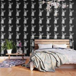 abyssinian cat kitten vector art black Wallpaper