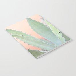Agave Potatorum Notebook