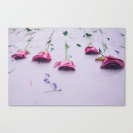 Pink roses in pink milk Canvas Print