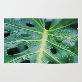 Sweaty leaf Rug