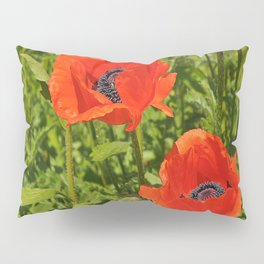 poppies nature Pillow Sham