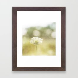 Queen Anne's Lace Nature Photography, Pale Yellow Floral Photography Framed Art Print