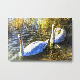 A Pair of Swans Art Metal Print