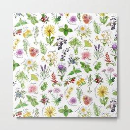 Plants & Herbs Alphabet Metal Print