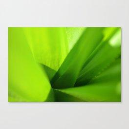 serrated Canvas Print