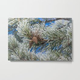Christmas frost Metal Print