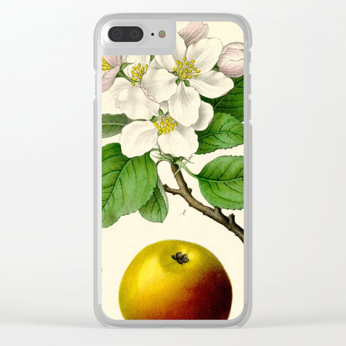 Antique Apple Study Clear iPhone Case