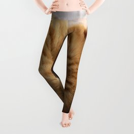 Sweet Dreams Leggings