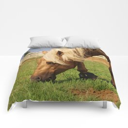 Who Whiz Waylon? Comforters