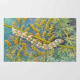 Cucullia Absinthii Caterpillar Rug