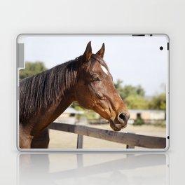 Handsome Gulliver Laptop & iPad Skin