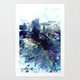 Winter Blossom Original Photography Art Print