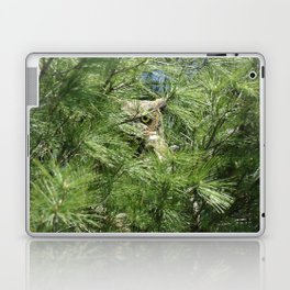 Can you find the owl Laptop & iPad Skin
