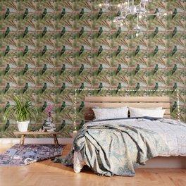 Bird - Photography Paper Effect 001 Wallpaper