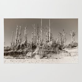 Dead Trees On The Beach Rug
