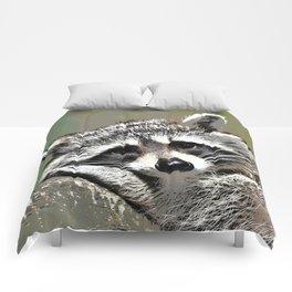 Toony Raccoon Comforters
