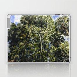Highlands Hammock Laptop & iPad Skin