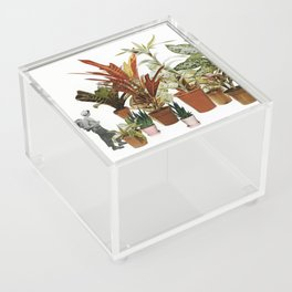 It's a Jungle Out There Acrylic Box
