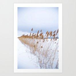 White field Art Print