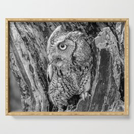 Echo the Screech Owl by Teresa Thompson Serving Tray