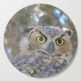 Young Owl at Noon Cutting Board