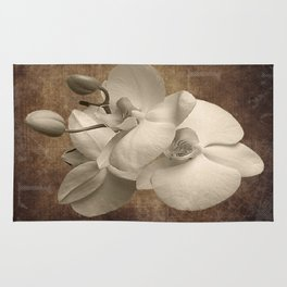 Vintage Flowers Digital Collage  2 Rug