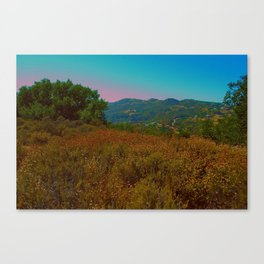 Technicolor  Canvas Print