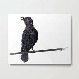 Verklempt Crow Metal Print